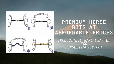 Horse bits at affordable prices